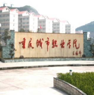 重庆城市职业学院(学前教育)