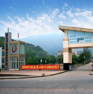 重庆市女子职业学校(教育类)
